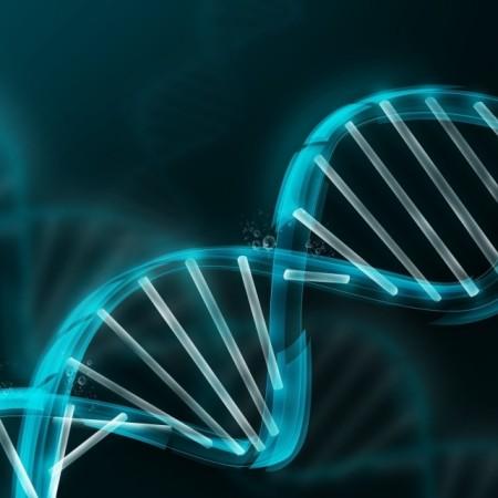 Microsoft consegue guardar vídeo de 200 MB em DNA